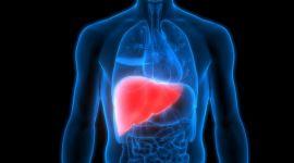 Криптогенный гепатит: что это такое, диагностика