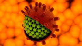Как передается гепатит А: механизм и способы передачи