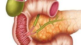Сфинктер Одди: признаки, причины и лечение дисфункции