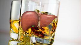 Алкогольная болезнь печени: симптомы, лечение, клинические рекомендации