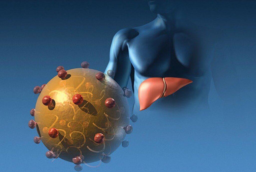 Хронический гепатит C
