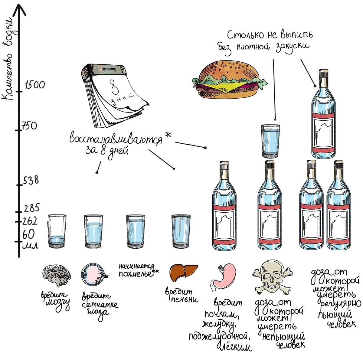 Вред алкоголя для печени