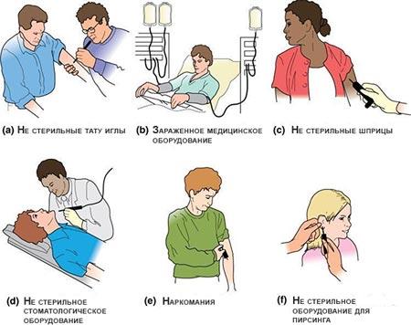 Как стать носителем гепатита Б
